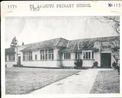 Te Awamutu Primary