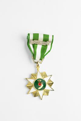 The South Vietnamese Campaign Medal