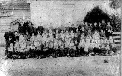 Te Awamutu School