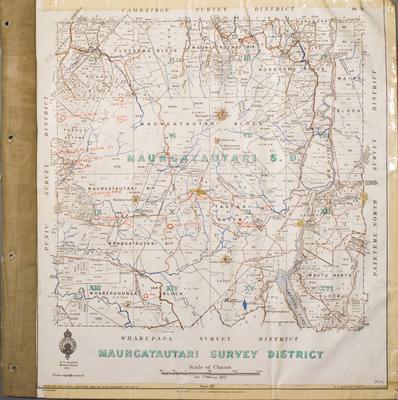 Maungatautari Survey District