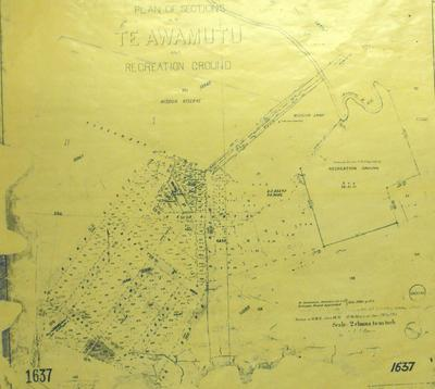Plan of Sections at Te Awamutu and Recreation Ground