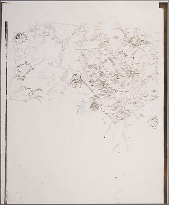 Waikato Sketch Map