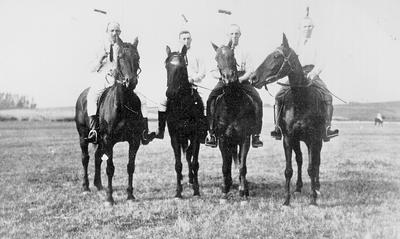 Te Awamutu Representative Polo Team