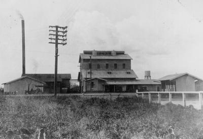 Dried Milk Factory