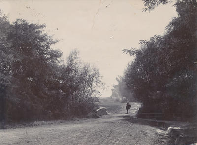 Arawata Street Bridge