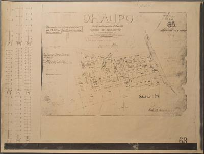 Ohaupo Being Southern Portion of Lot 310 Parish of Ngaroto