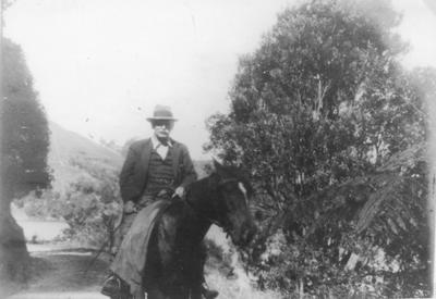 W.F. Wallis