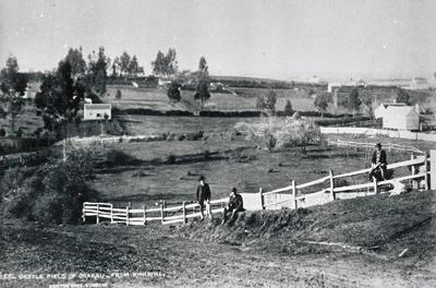 Battle of Orakau Site - 1886