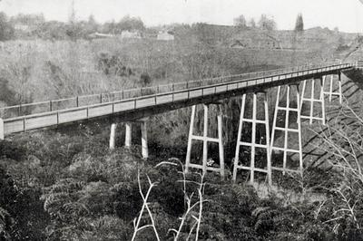 Bridge over Waipa River