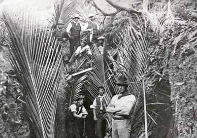 Te Awamutu Flaxmill Workers