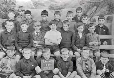 Te Awamutu Primary School Group