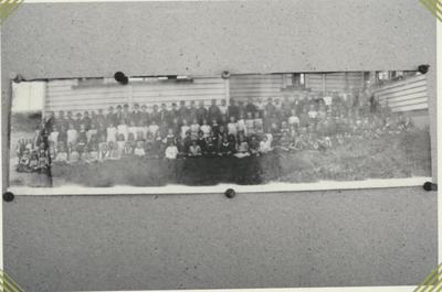 Te Awamutu Primary School