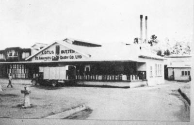 Lotus Dairy Company Factory