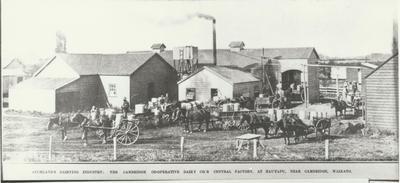 Hautapu Dairy Factory