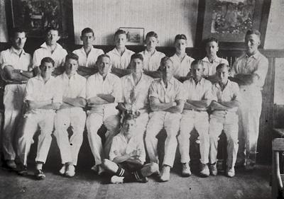 Te Awamutu Cricket Club
