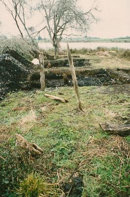 Rotokauri Archaeological Dig