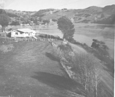 Kinohaku House