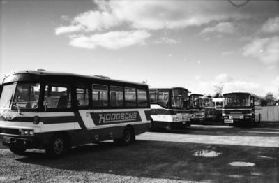 Hodgson's Buses