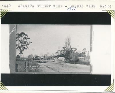 Arawata Street