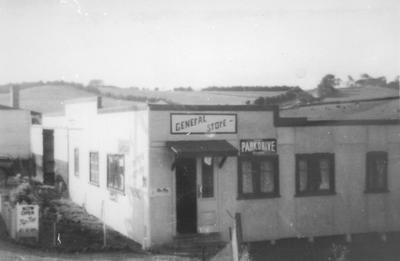 Te Pahu General Store
