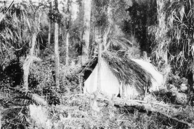 Bushman's Camp