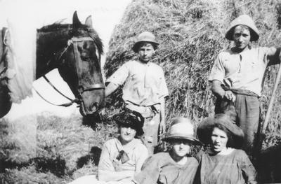 Arthur Family Haymaking