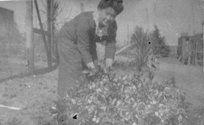 Elizabeth Langmuir