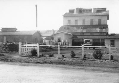 Te Awamutu Lotus Dairy Company