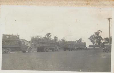 Pirongia Transport