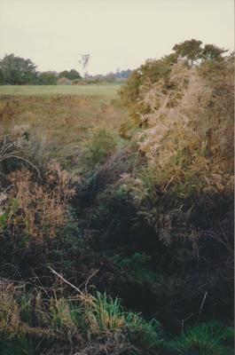 Matakitaki Trench