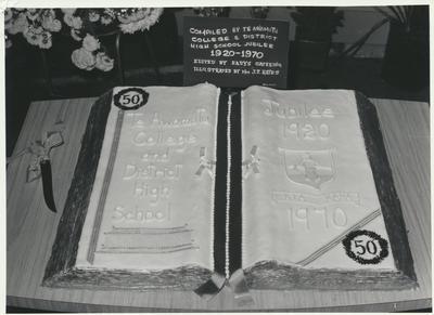 Te Awamutu College Jubilee Cake