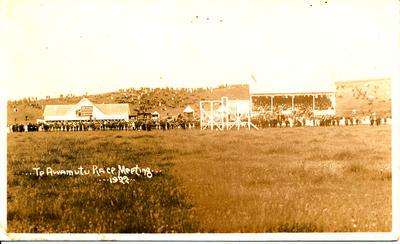 Te Awamutu Racecourse