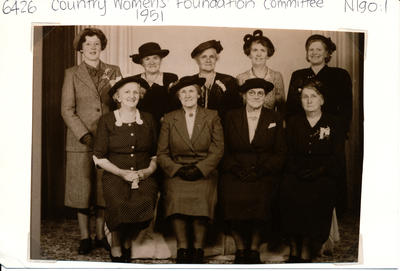 Country Womens Foundation Committee
