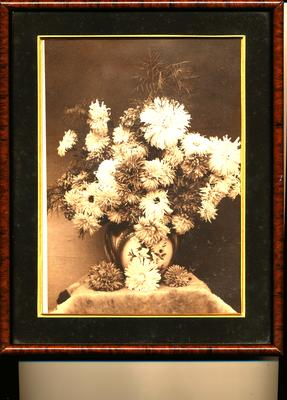 Photograph of Flowers in Vase