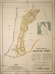 Great Future of Arapuni Town