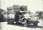 Vazeys Truck