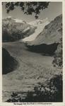 Fox Glacier From Cone Rock