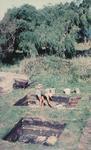 Ngaroto Archaeological Dig